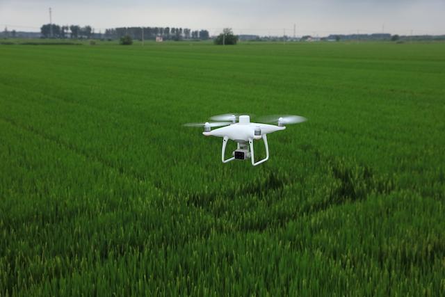 DJI Phanom 4 Multispektral Agrar Drohne